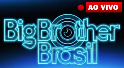 bbb13 como assistir ao vivo de graça pela internet, streaming gratis