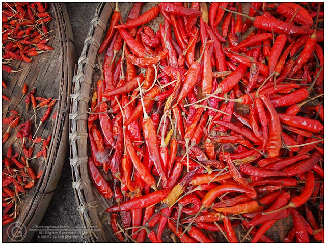 Photograph Hot Spicy Chilli