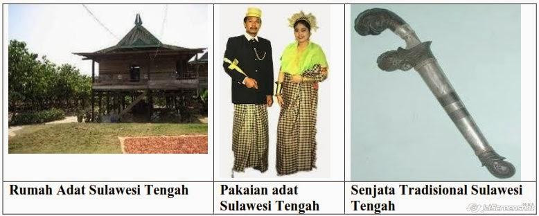 rumah,pakaian,senjata adat sulawesi tengah