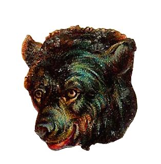 Digital Brown Bear Clip Art