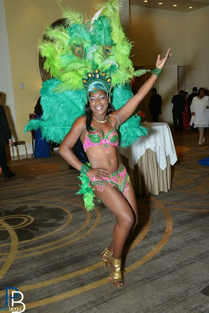 Picture 5 - Dance Brasil Samba Company - The City Dweller