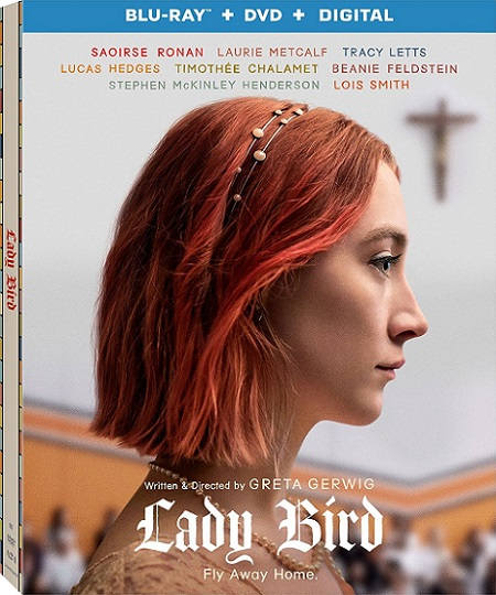 Lady Bird (2017) 720p y 1080p BDRip mkv AC3 5.1 ch subs español