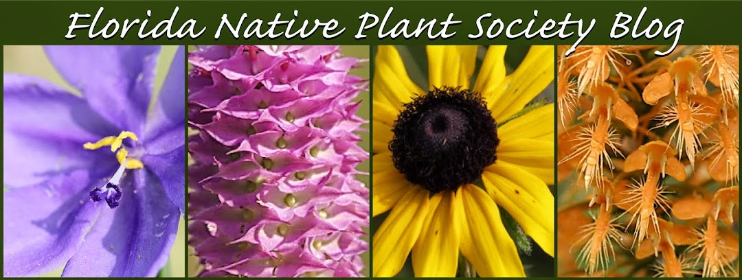 Florida Native Plant Society Blog