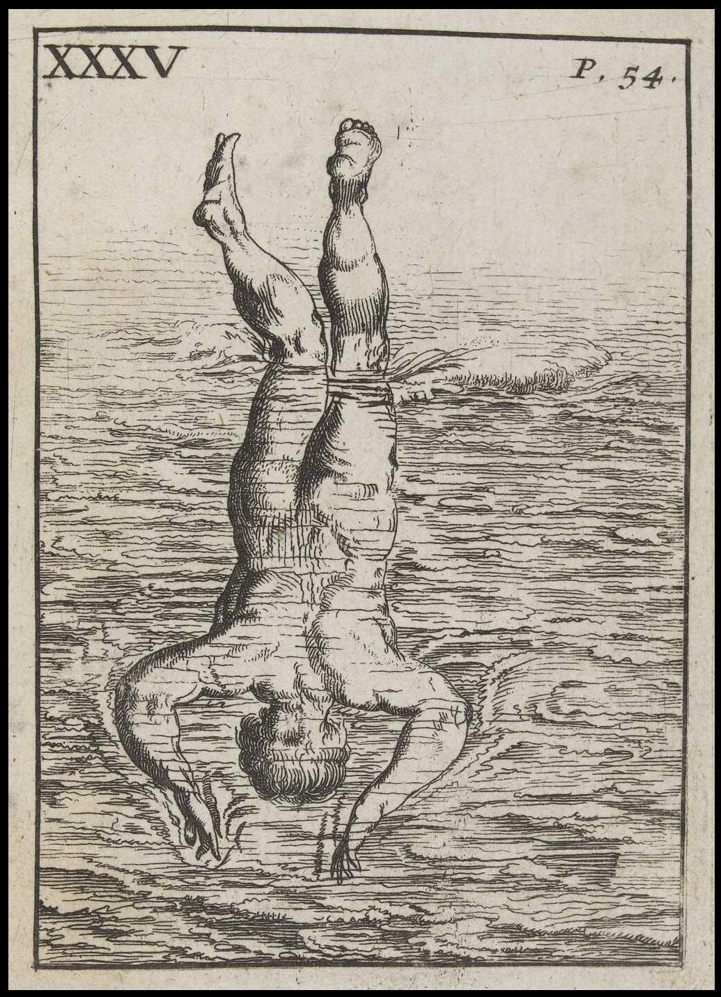 book illustration of vertical dive into water