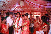 Amala Paul Al Vijay wedding Photos-thumbnail-22