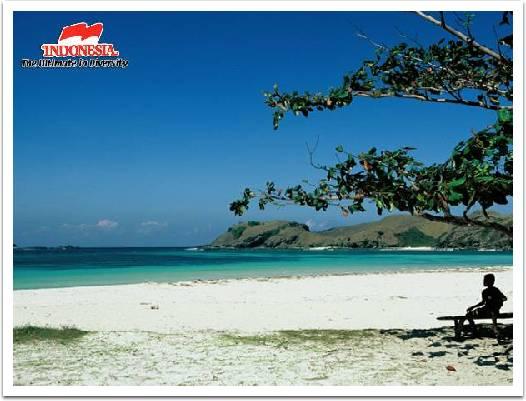 1000  ideas about Lovina Bali on Pinterest | Upcycling