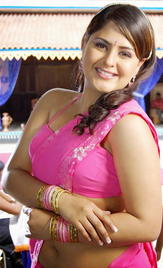 Tamil Hot Actress Farzana Deep Sexy Navel Pictures In Saree