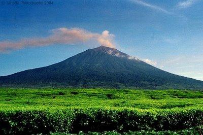 Gunung kerinci merupakan gunung berapi yang tertinggi di indonesia