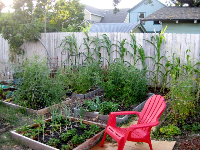 backyard farming your backyard farm. Black Bedroom Furniture Sets. Home Design Ideas