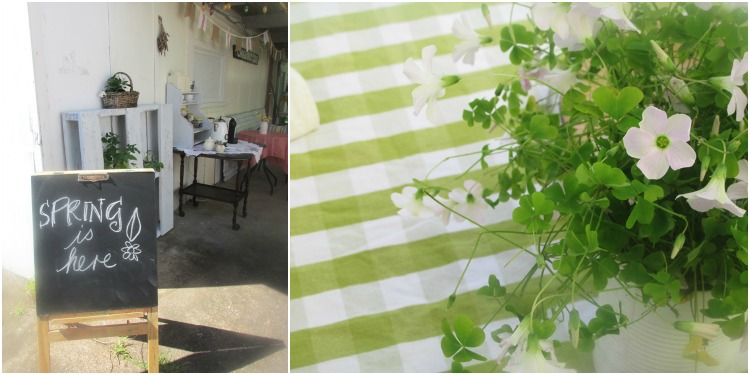Weeds in a can make a pretty table centrepiece - who knew?