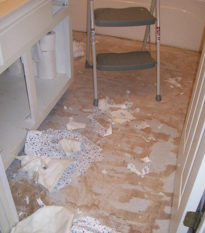 My Bathroom Floor Is Leaking : Reading rosie