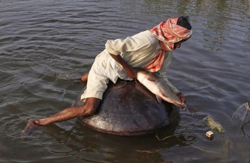 Menangkap Ikan Besar Untuk Menangkap Ikan