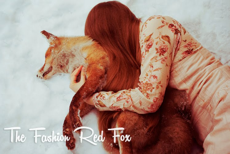 The fashion red fox