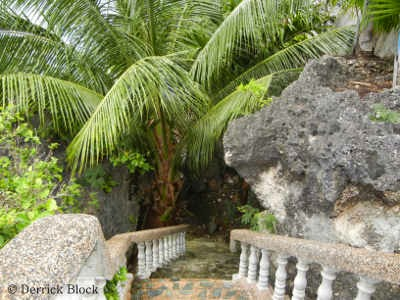 cebu resort beach stairs