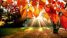 En otoño...