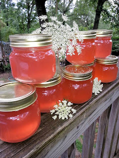 canning, preserve, jelly, flower, queen anne's lace