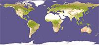 Adopcion internacional