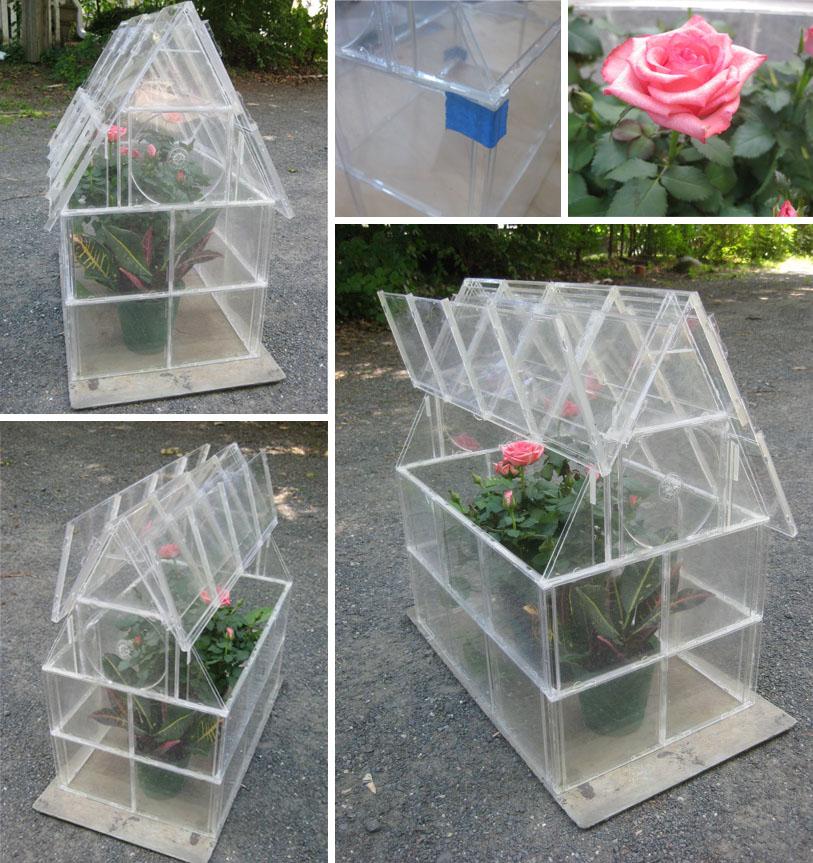 Cute Little Greenhouses Kinda Cute Little cd Case