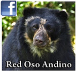 Grupo Red Oso Andino - Facebook