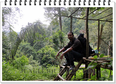 Monsoon Jungle Camping Log ~ The Abandoned Jungle Hut