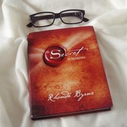 O que estou lendo: