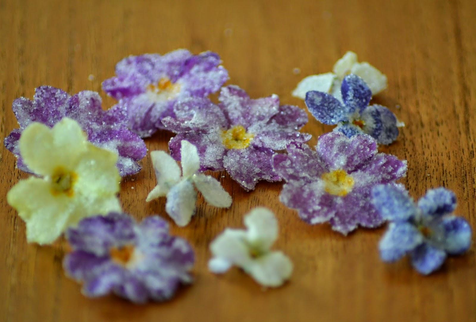 Eetbare bloemen -viooltjes en primula's- konfijten