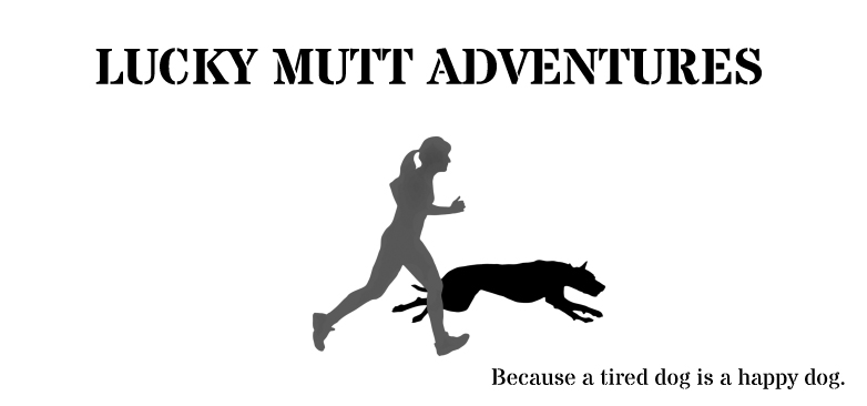 Lucky Mutt Adventures