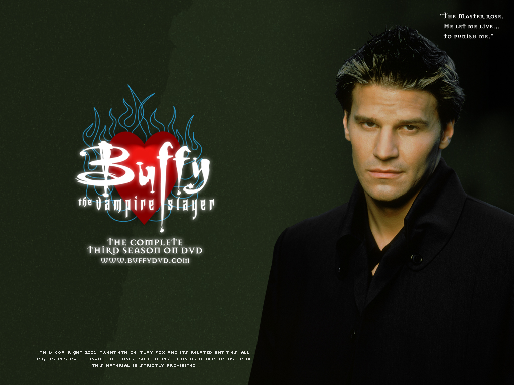 David Boreanaz Angel TV Show