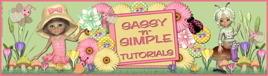 Sassy N Simple Basic Steps