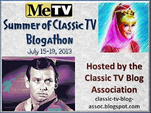MeTV Summer of Classic TV Blogathon