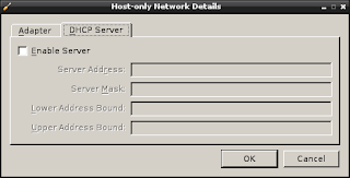 screenshot of the host only network DHCP screen
