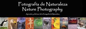 Revistas - Libros - Portfolios - Vídeos - Artículos - Formación