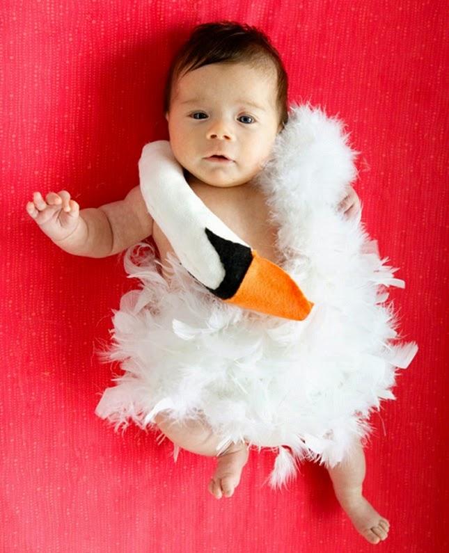 Los 10 Disfraces de Halloween más Divertidos para Bebes