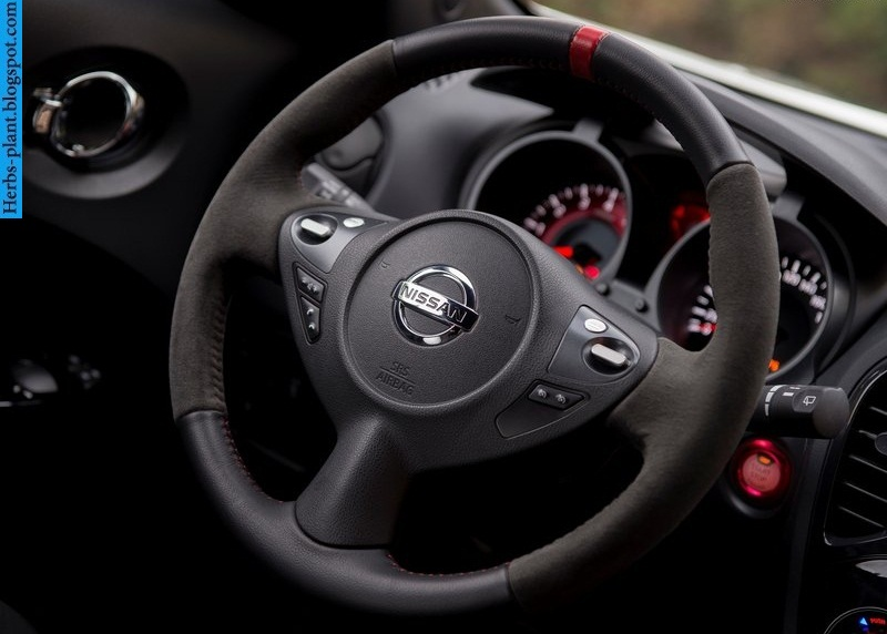 Nissan juke car 2013 dashboard - صور تابلوه سيارة نيسان جوك 2013