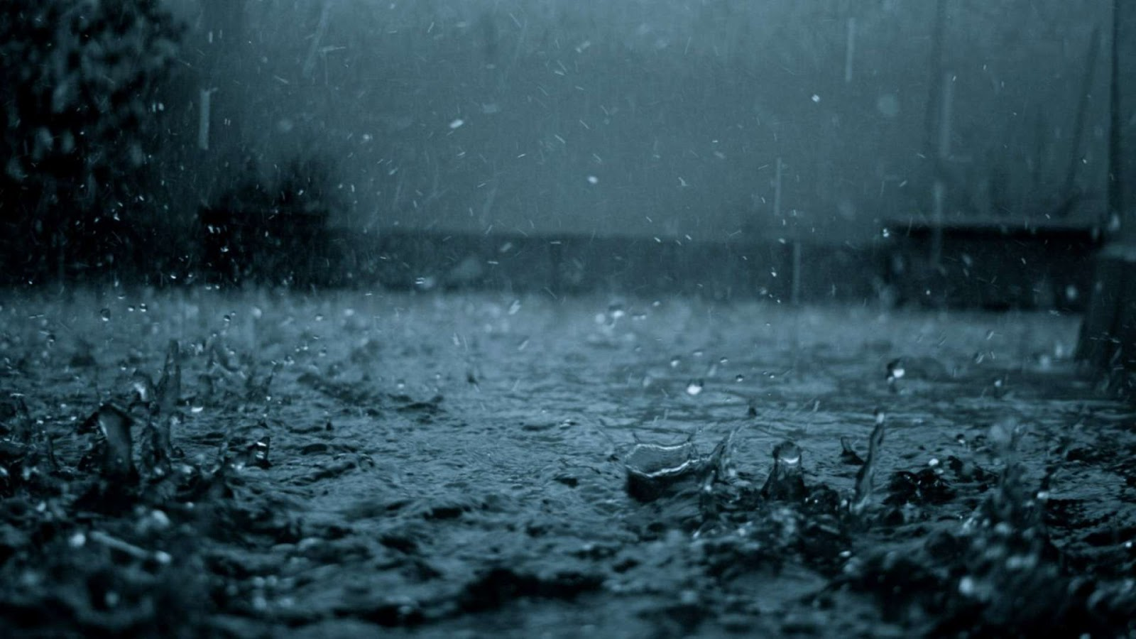 Nature Rain Hd Wallpapers