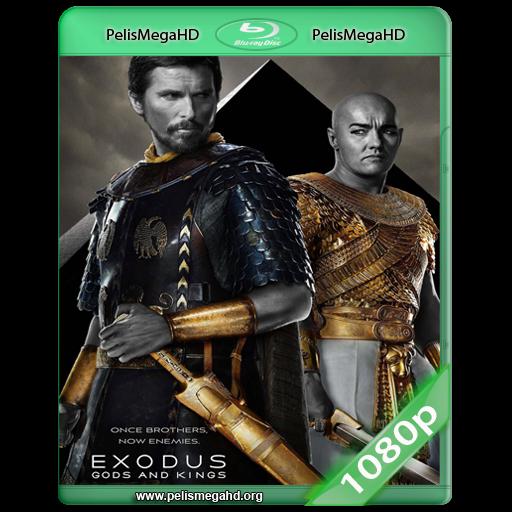 EXODUS: DIOSES Y REYES (2014) WEB-DL 1080P HD MKV ESPAÑOL LATINO