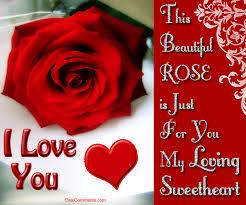 rose day photos