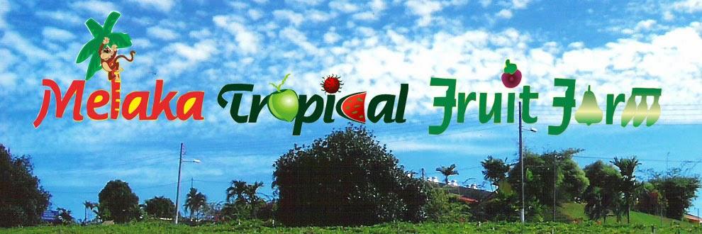 Melaka Tropical Fruit Farm