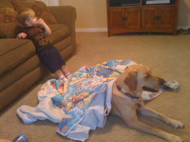 Little boy and his dog friend (24 pics), dog and baby friends pics, cute dog pics, adorable photos of baby and dog