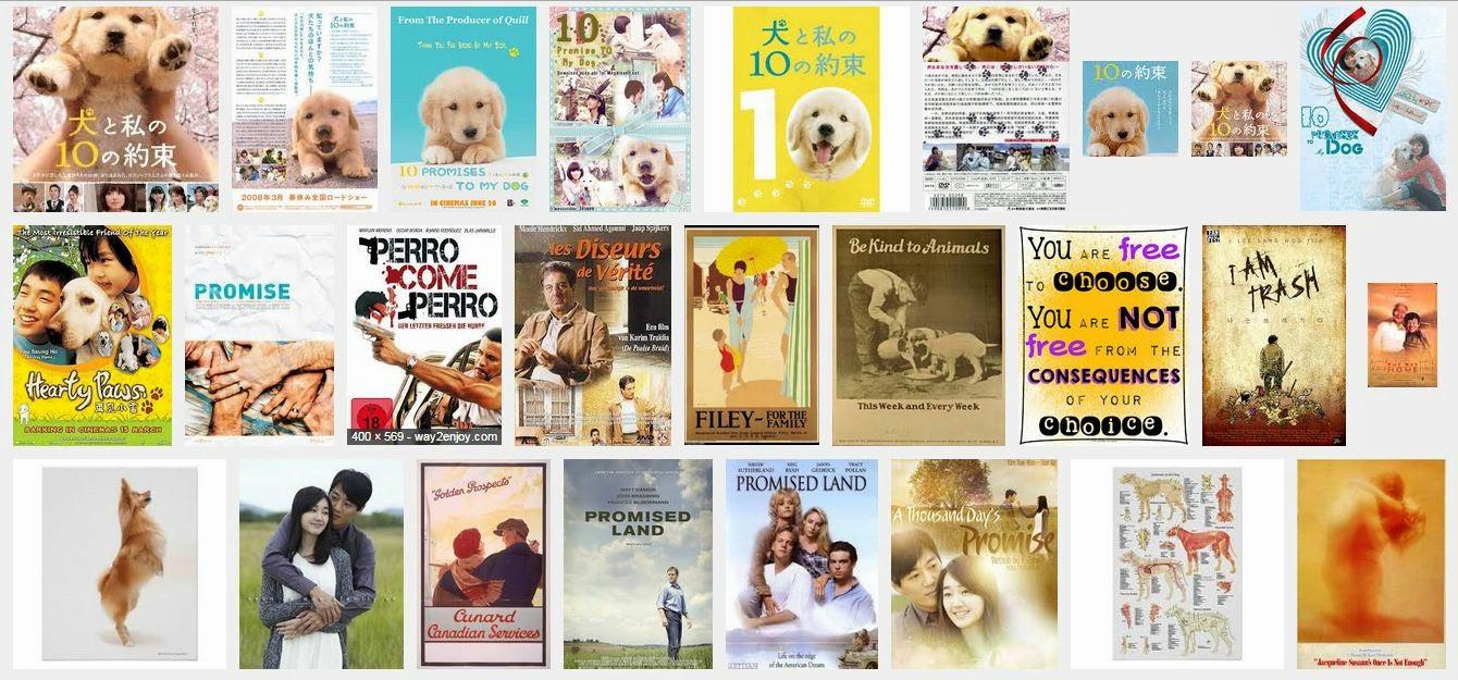 Xem phim 10 Promises To My Dog - 10 lời hứa dành cho chú chó của tôi Vietsub