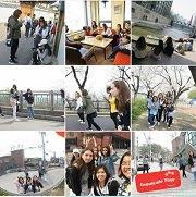 Seoul Cafe Tour