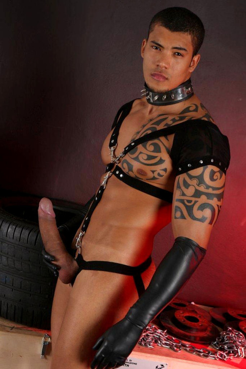 about muscled men hung leather hunk