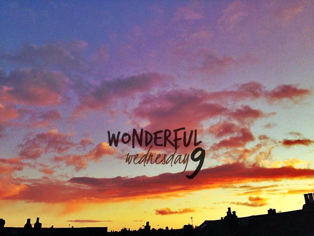 Wonderful Wednesday 9
