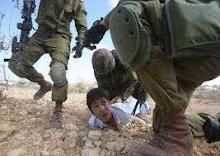 Palestinian BRAVEST WARRIOR