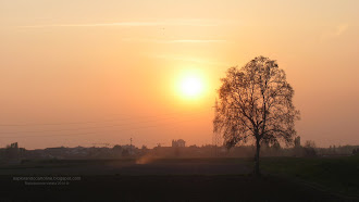 Fondale desktop tramonto