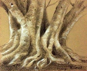 Charcoal and pastel painting of a tree trunk on toned paper by Manju Panchal
