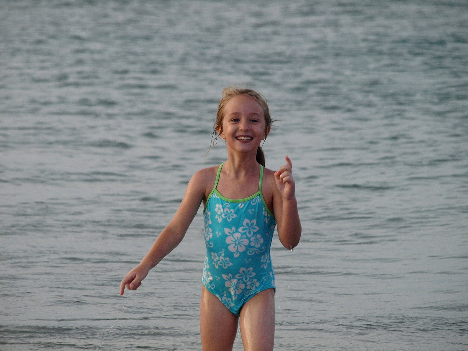 Dolphins Beach Bald Head Island