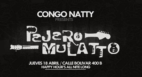 PAJARO MULATTO en el Congo Natty (18 de abril)