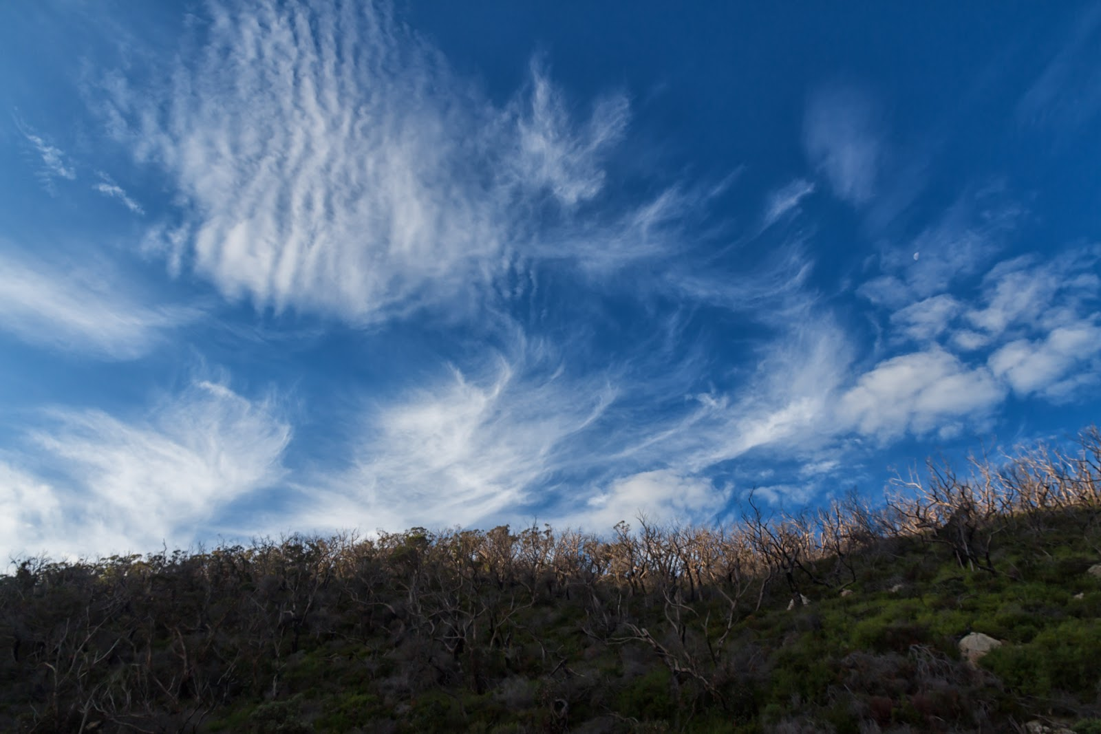blue skies wispy clouds wilsons promontory