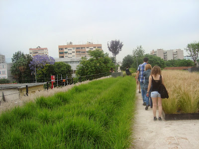 green roof στην Πειραιως 222
